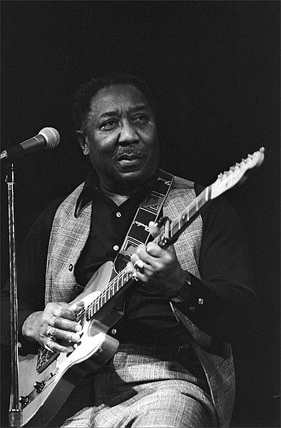 muddy_waters_std.jpg